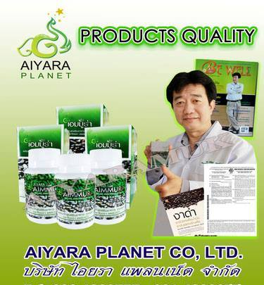 Aiyara banner2